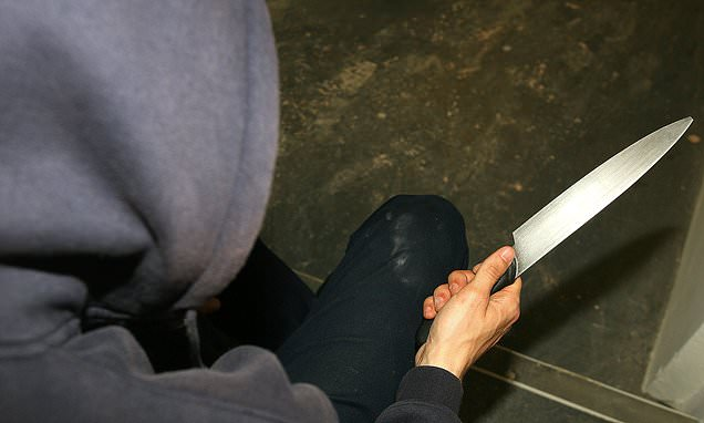 Serious crimes are on rise as government fails to get grip on gangs