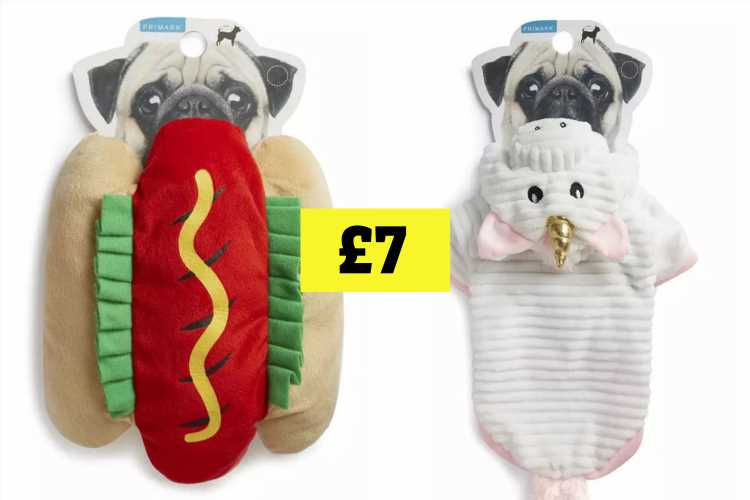 Primark launches its first pet clothing line so you can dress your dog up like a unicorn, hotdog or bee for £7 – The Sun