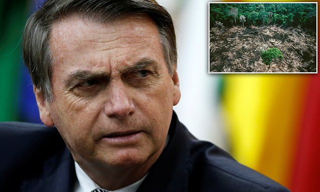 Brazil's far-right president Bolsonaro declares 'Amazon is ours'