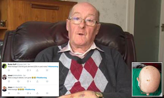 Pensioner mocked as he claims he was 'held hostage by seagulls'