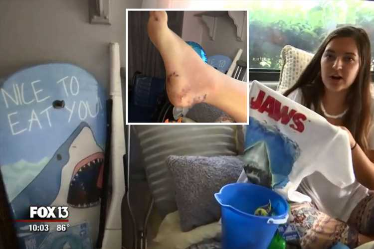 Girl, 16, mauled by a shark while body surfing at Florida tourist hotspot – The Sun