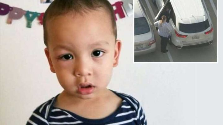 Mum's horror as her son, 2, dies after 'waking up from a nap and locking himself in hot car with tinted windows' – The Sun