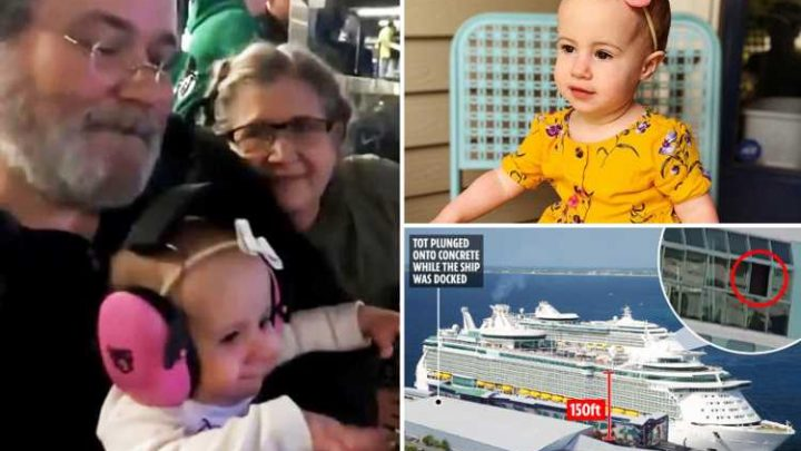 Grandad pictured with tragic tot he dropped 150ft to her death from Royal Caribbean ship window 'he'd mistakenly thought was shut' – The Sun