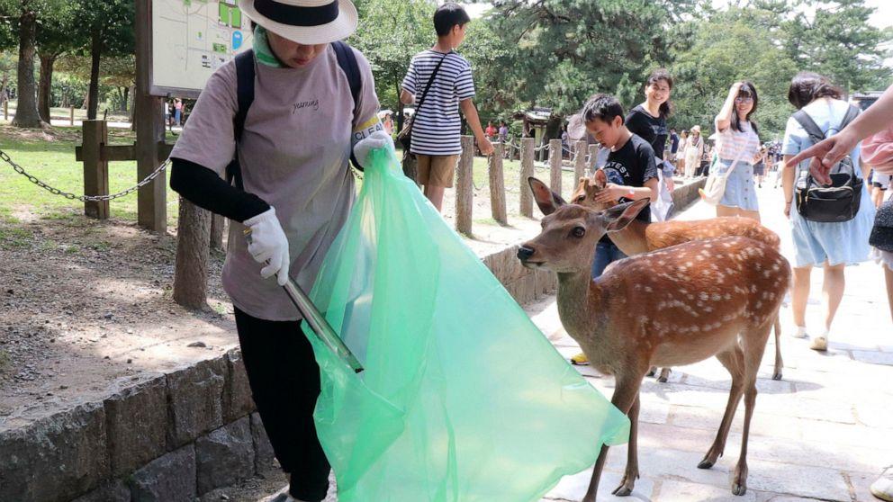 9 deer at famed park in Japan die after eating plastic bags
