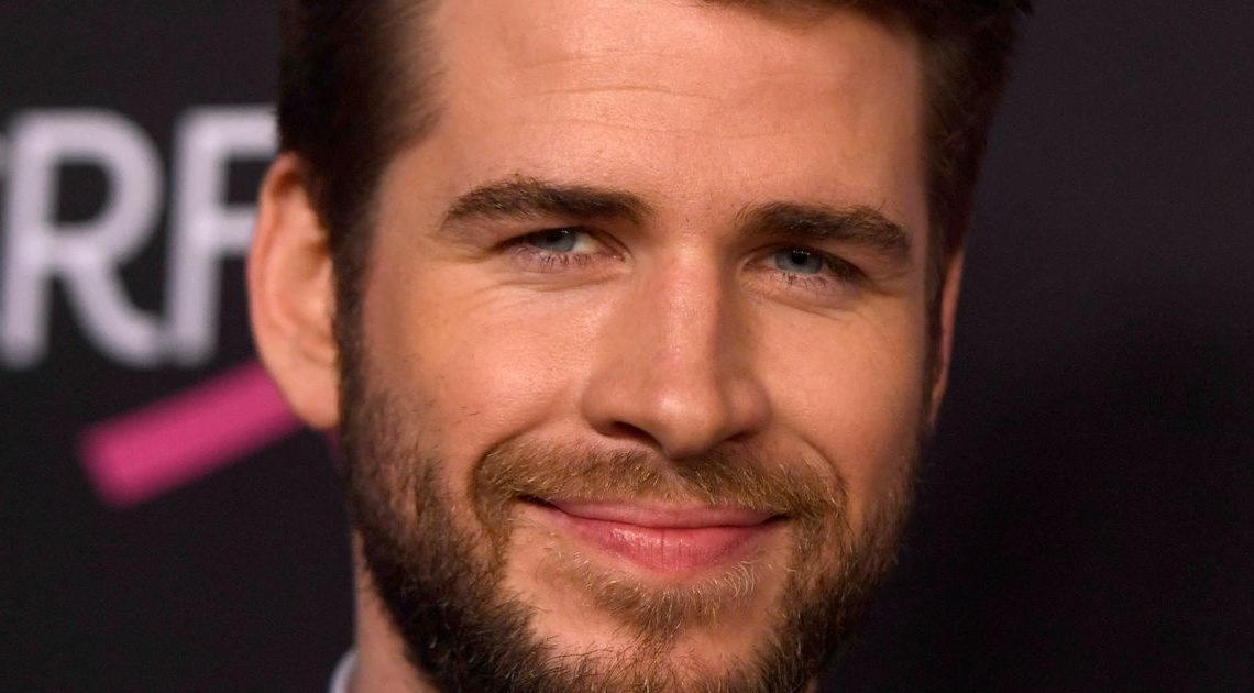 Liam Hemsworth 'turns to actress Isabel Lucas' after shock Miley Cyrus split