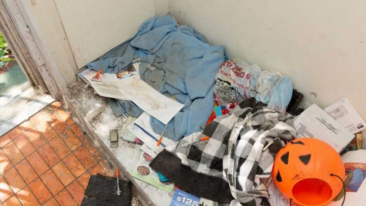 'Zombie homes' lure black mold, drug addicts to Brooklyn neighborhood