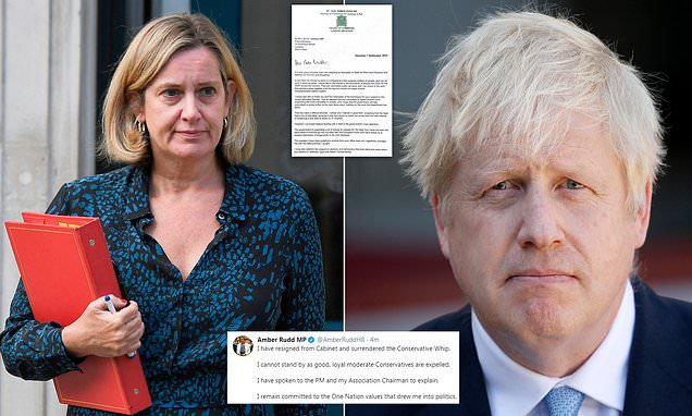 Rudd resigns and quits Tory party as she lashes Johnson's purge