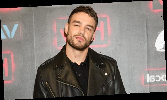 Liam Payne's Holiday Wish Is To Stop Fighting With His Lover In New Song 'All I Want (For Christmas)'