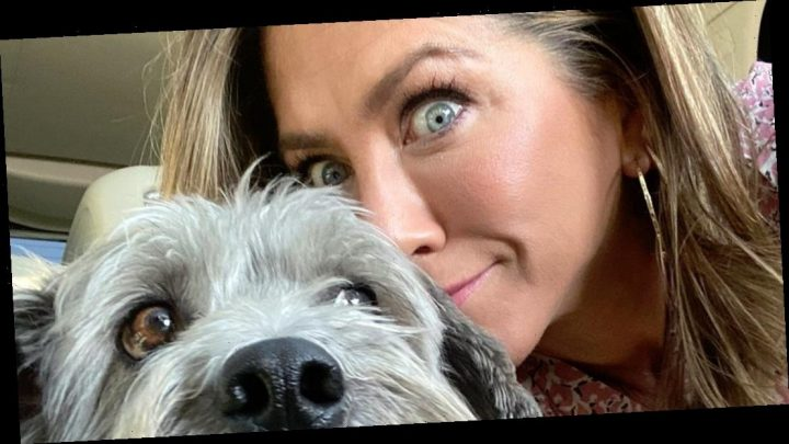 Jennifer Aniston Shares Adorable Snaps of Her Pup: 'Girl's Best Friend'