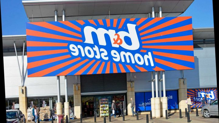 B&M launches massive Black Friday deals one week early – The Sun