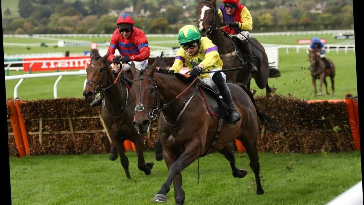 Market movers: Today's horse racing betting news this Friday