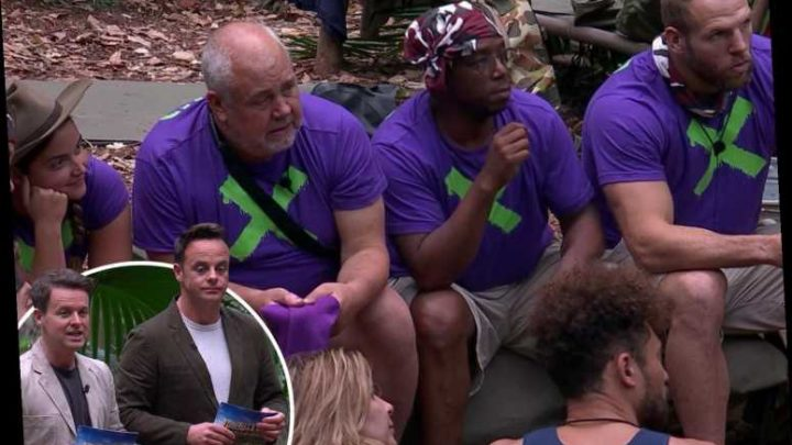 I'm A Celebrity's Ant and Dec confirm immunity twist as the camp prepares for the first elimination tonight