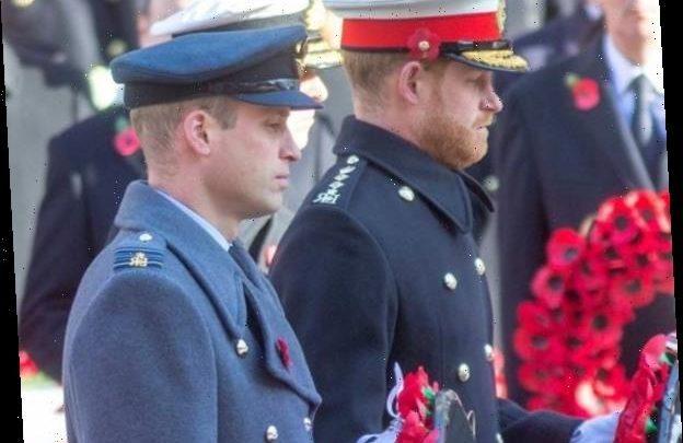 Harry & Meghan, William & Kate Reunite Again at Remembrance Ceremony