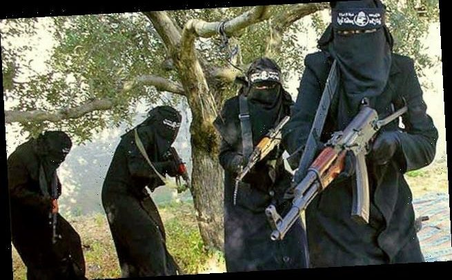 Woman forced to work in ISIS schools