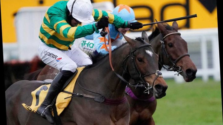 Defi Du Seuil triumphs in thrilling Tingle Creek at Sandown for Philip Hobbs