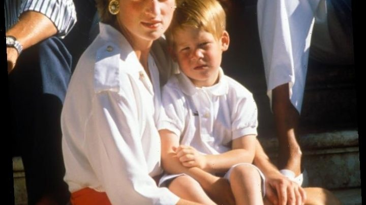 The Heartbreaking Thing Prince Harry Saw Before He Knew Prince Charles Was Cheating on Princess Diana With Camilla