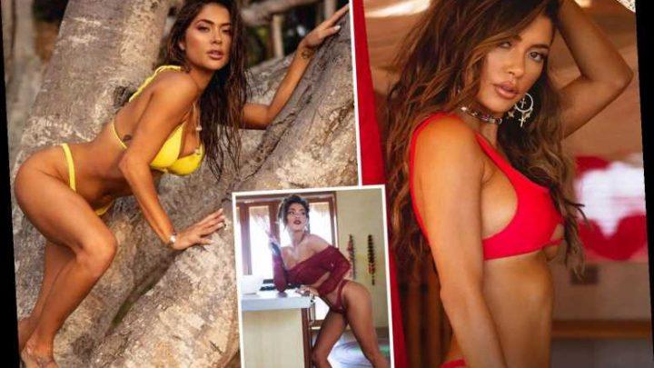 UFC ring girl Arianny Celeste stuns in tiny red bikini in steamy shoot for 2020 calendar – The Sun