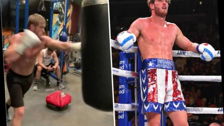 YouTube star Logan Paul works out on a punch bag after devastating KSI loss as he targets next fight – The Sun