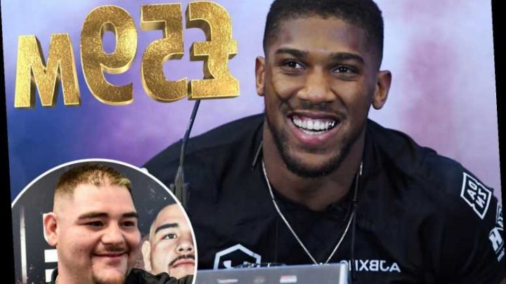 Anthony Joshua set to more than DOUBLE his net worth from Andy Ruiz Jr rematch by earning £59m, claims Jarrell Miller – The Sun