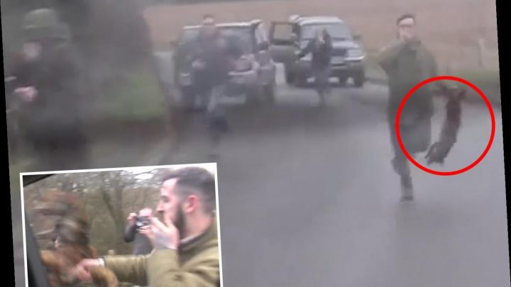 Sickening moment hunt supporter batters dead FOX against saboteurs' car in bloody attack