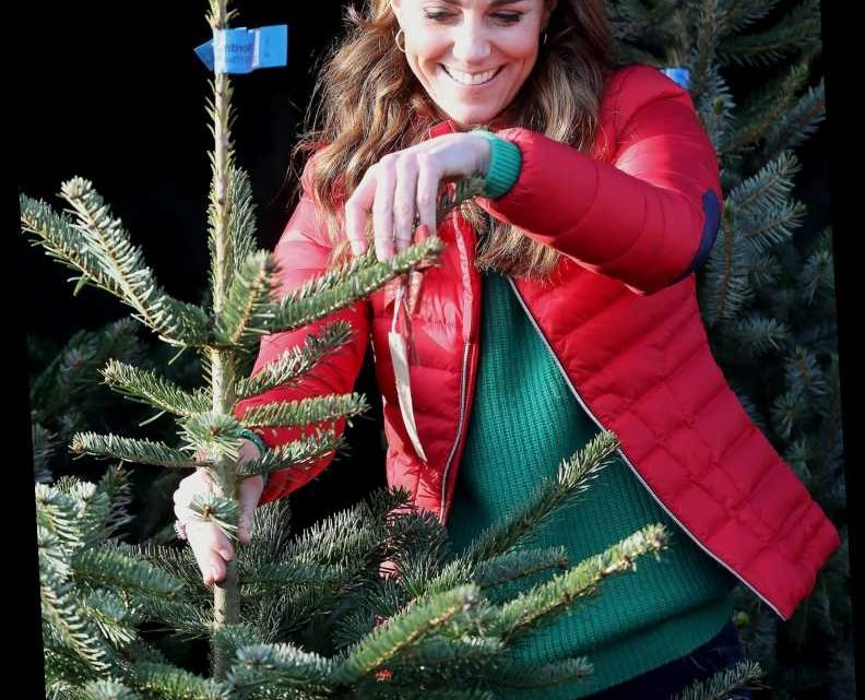 Kate Middleton's Festive Red Puffer Is So Cute, We Found a Lookalike for $40