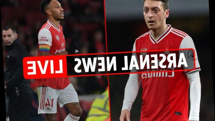5pm Arsenal news LIVE: Ljungberg says players 'scared', Aubameyang toilet break, Ozil-Mertesacker row, boss interviews – The Sun