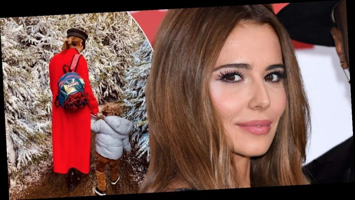 Cheryl reveals she's looking for a sperm donor and admits she's 'not very good at choosing' a man