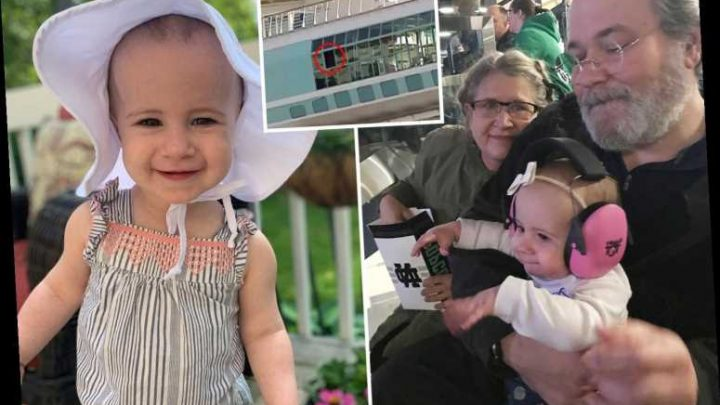 Grandad who dropped toddler from cruise ship held her out of open window for 34 SECONDS, court docs claim – The Sun