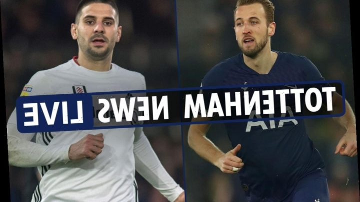 4pm Tottenham news LIVE: Mitrovic could replace Kane, Winks to Manchester United, Wanyama to Galatasaray – The Sun