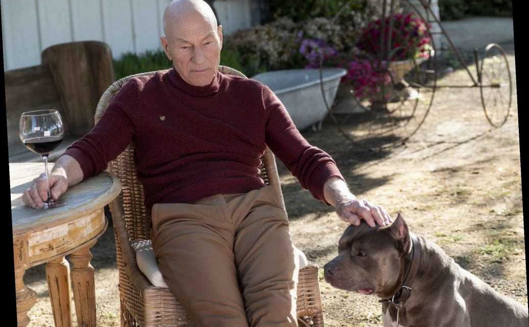 Star Trek: Picard – how to watch online, cast, episode information and trailer