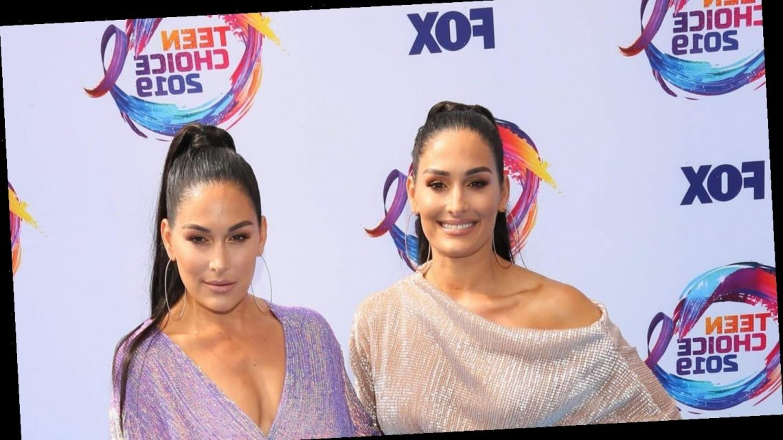 Nikki and Brie Bella are pregnant, due within two weeks of each other: 'We both are shocked'