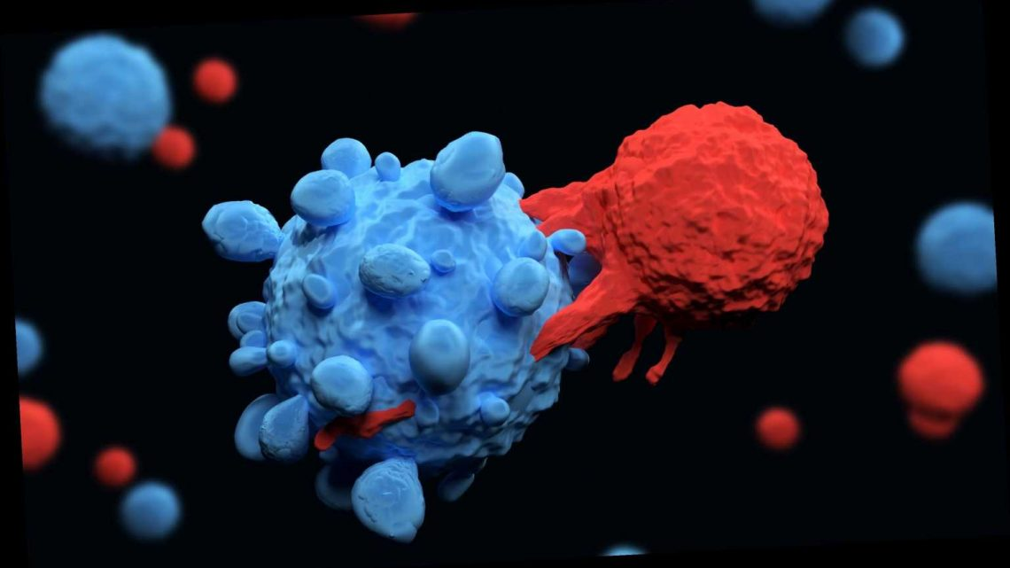 New discovery may lead to 'one-size-fits-all' cancer treatment one day, researchers say