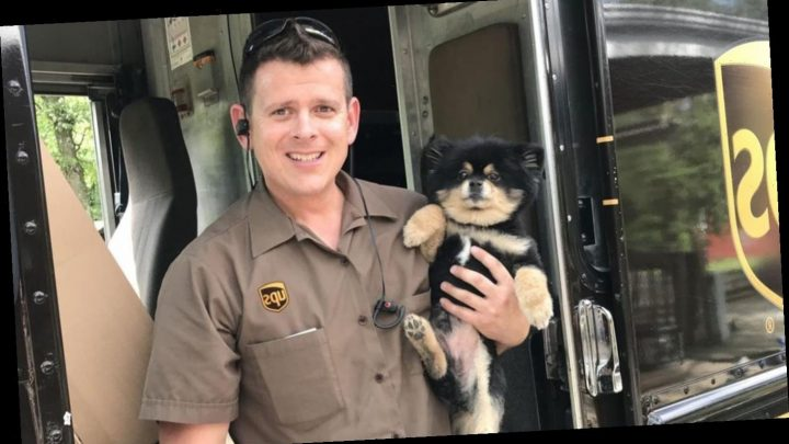 A UPS driver started posting dog pictures in 2013. It's now a viral sensation with 1.6M likes