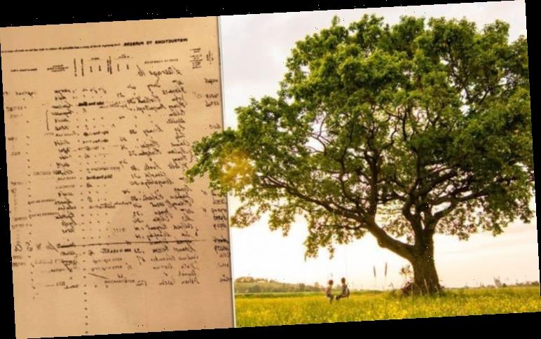 A family tree search exposed scandal and a jewellery empire in my family history