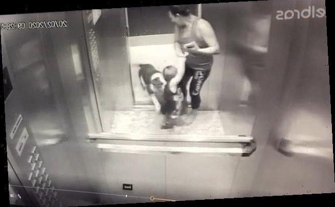 Horrifying moment bulldog attacks a toddler in an elevator in Brazil