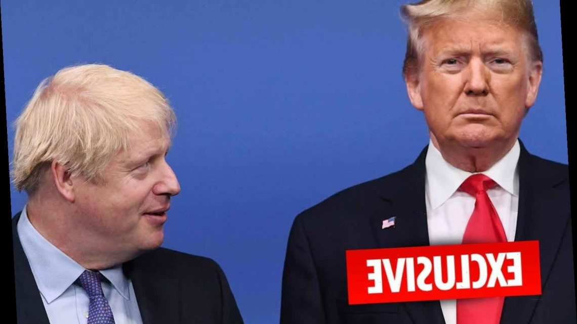 Boris Johnson risks deepening tensions with Donald Trump by cancelling a trip to the US to see him – The Sun