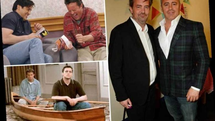 Matthew Perry & Matt LeBlanc charmed Friends fans with bromance but struggled with the real world away from Central Perk – The Sun
