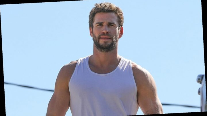 Liam Hemsworth's Muscles Look So Pumped Up After His Friday Morning Workout