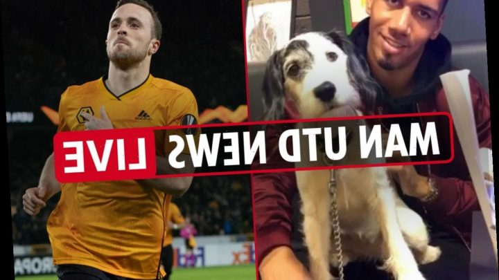 10.40am Man Utd news LIVE: Smalling dog 'killed by mystery poisoners', Jota transfer wanted, Allegri hint – The Sun