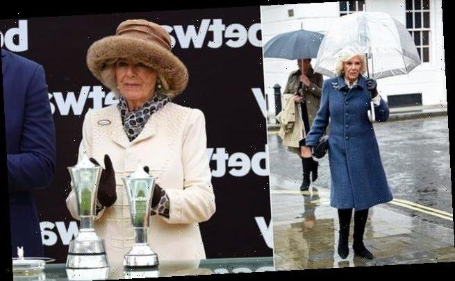 Camilla will attend Ladies Day at Cheltenham Racecourse next week