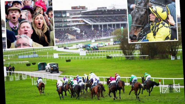 Cheltenham Festival 2020 LIVE RESULTS: Stream free, TV channel, runners, race cards, betting tips for Champion Day TODAY – The Sun