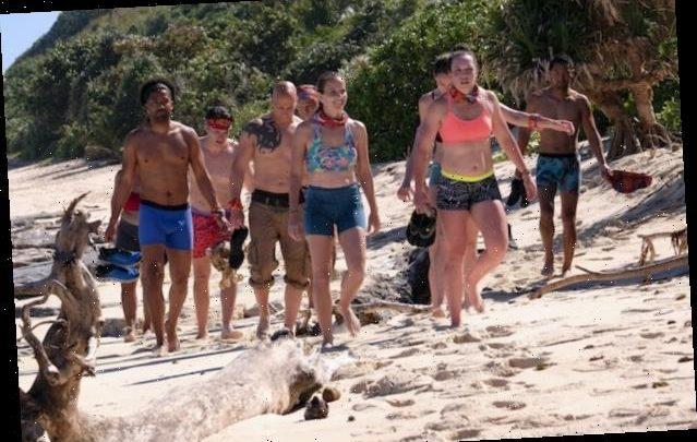 'Survivor' Delays Production on Season 41 Amid Coronavirus Pandemic