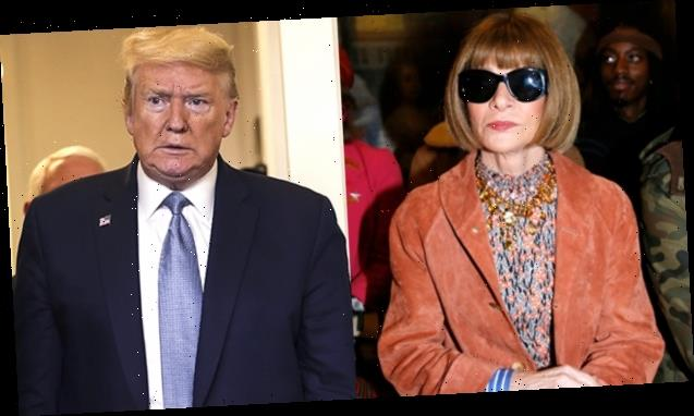 Anna Wintour Scorches Trump's 'Shocking Lack Of Empathy' In Coronavirus Crisis