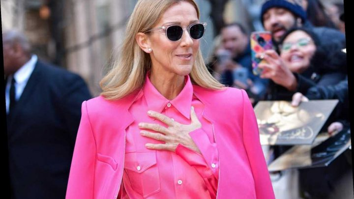 Céline Dion tests negative for coronavirus, postpones shows for cold