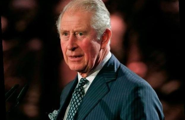 Prince Charles Is Touched by Well-Wishes After Coronavirus Diagnosis