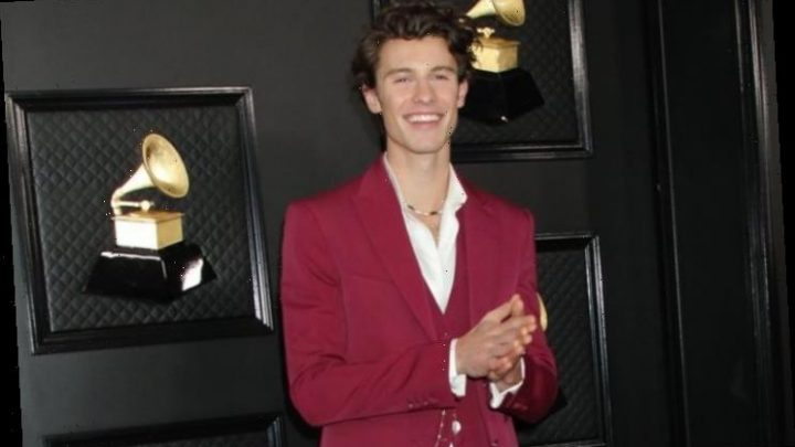 Shawn Mendes Hands Out $175K to Toronto Charity in Light of Coronavirus Crisis