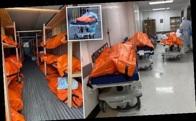 Disturbing photos show body bags fill hallways of Brooklyn hospital