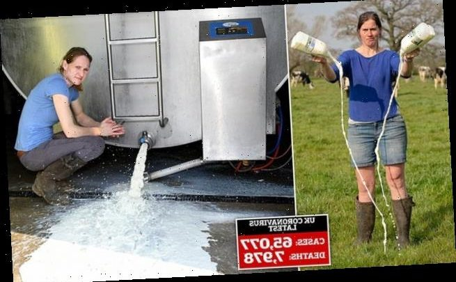Dairy farmers share stories of their 'utter desperation'