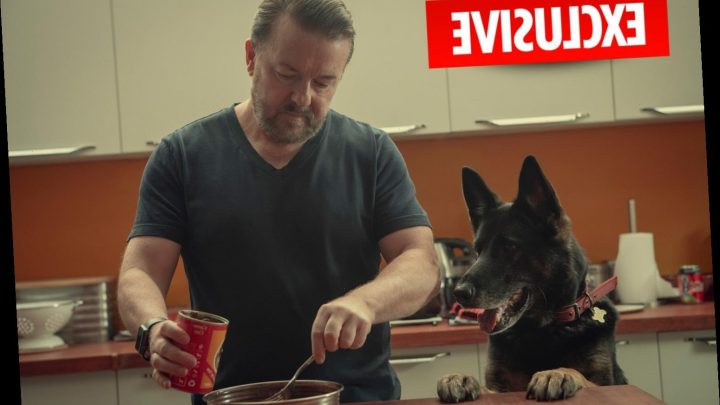 Ricky Gervais boosts his companies' earnings by £2m after landing huge Netflix deal – The Sun