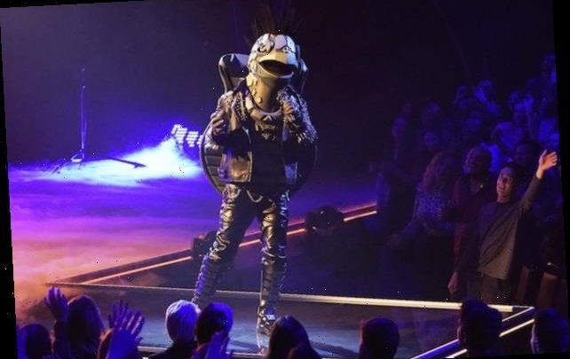 The Masked Singer: Up-to-the-Minute Clues About Turtle, Banana & Co.